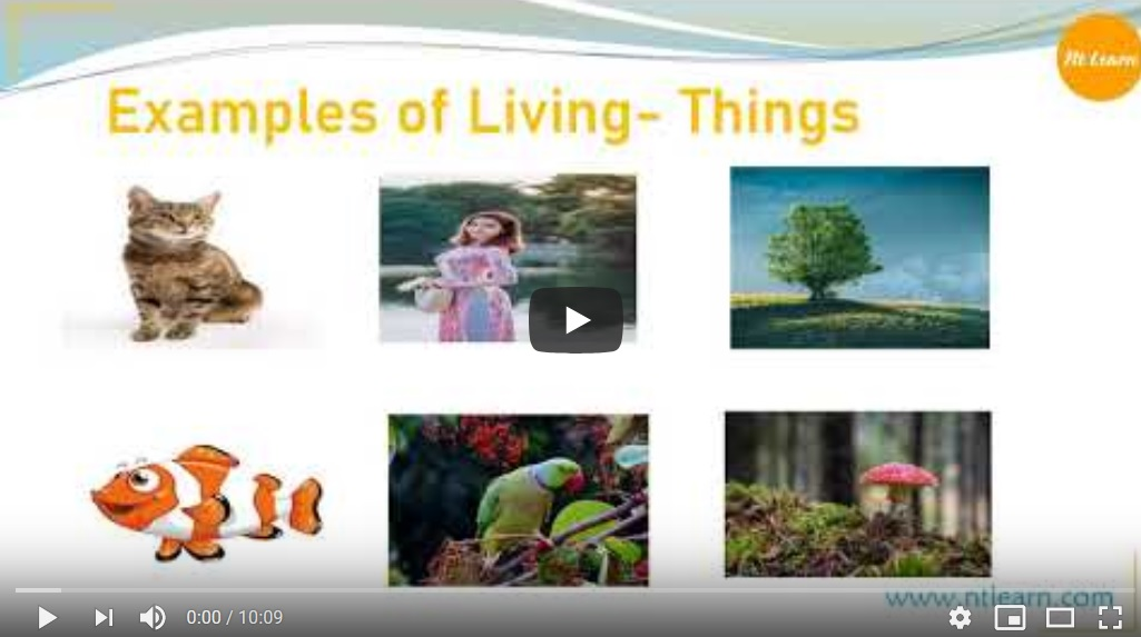 NTLearn - Living and Non-Living Things